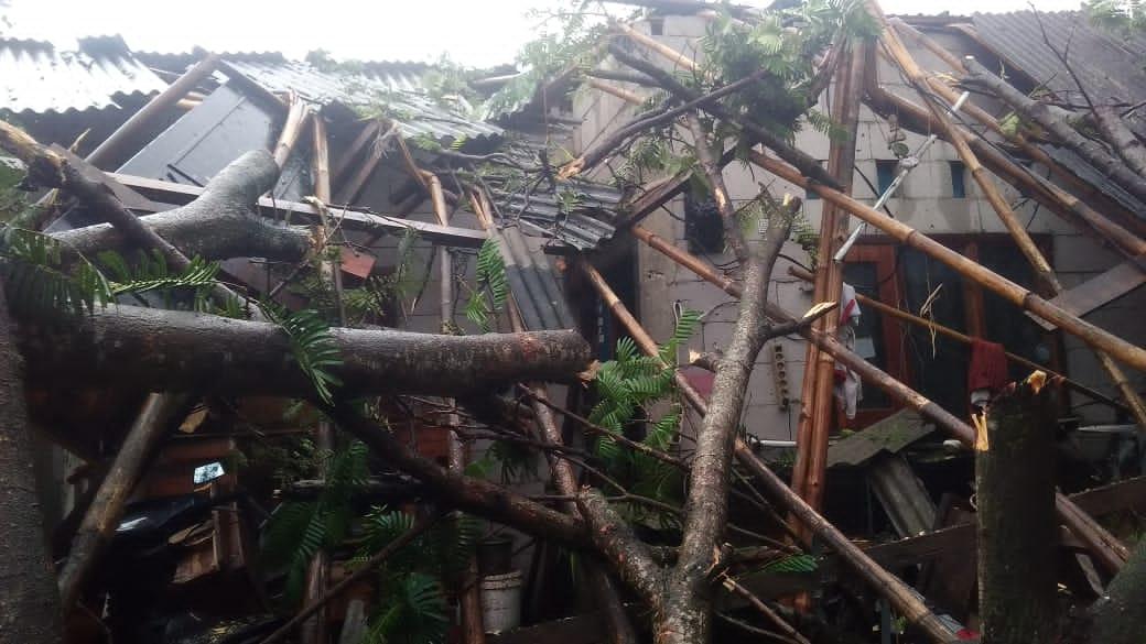 Reruntuhan pohon yang menimpa rumah warga Kecamatan Sindang Jaya akibat angin puting beliung di Kecamatan Sindang Jaya, Kabupaten Tangerang, Kamis 1 Juli 2021.